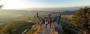 Hohe Wand - Skywalk Panorama